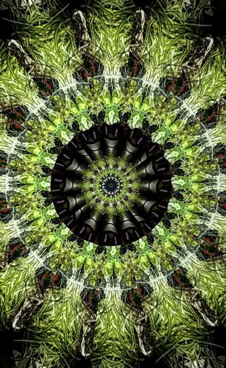 Green Fern Mandala - Graphics By Nesbitt