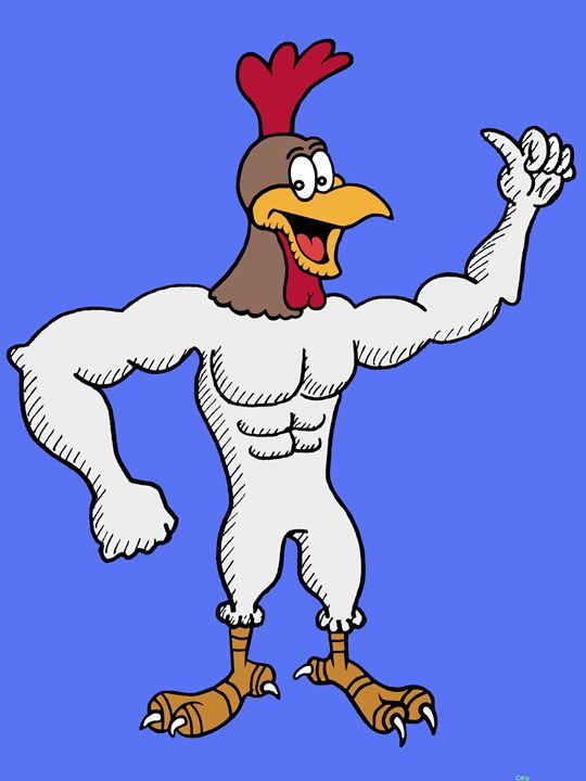 Brucester Rooster - Chase N. Gillis Cartoons