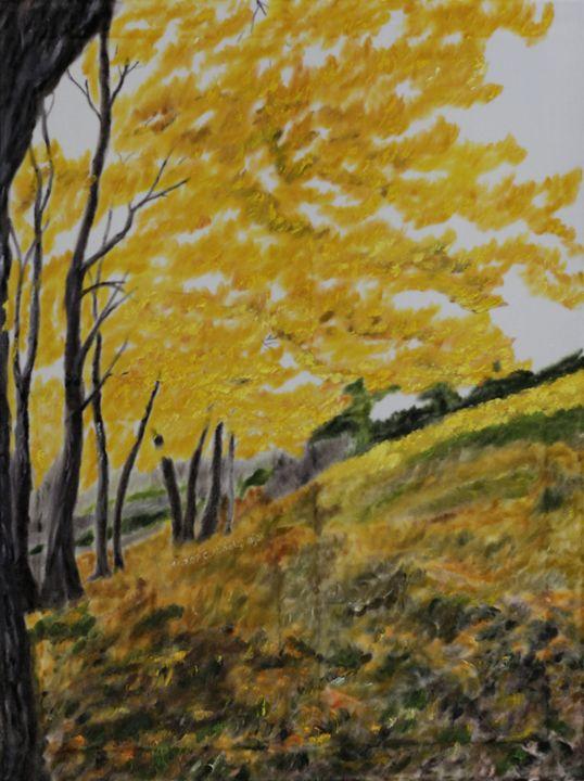 Forest in autumn - Claudia Luethi alias Abdelghafar