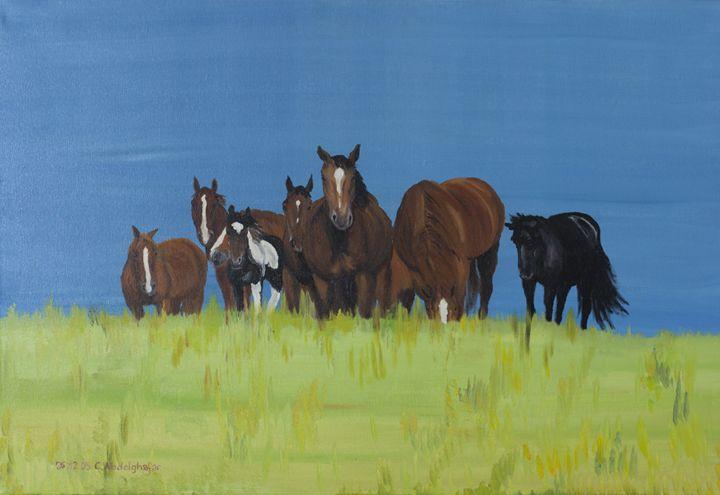 Herd of horses relaxing - Claudia Luethi alias Abdelghafar