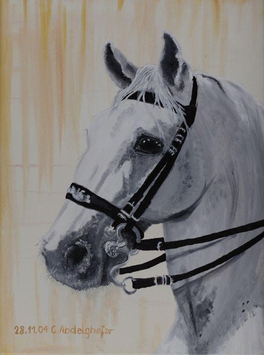 Lippizan horse with special bridle - Claudia Luethi alias Abdelghafar