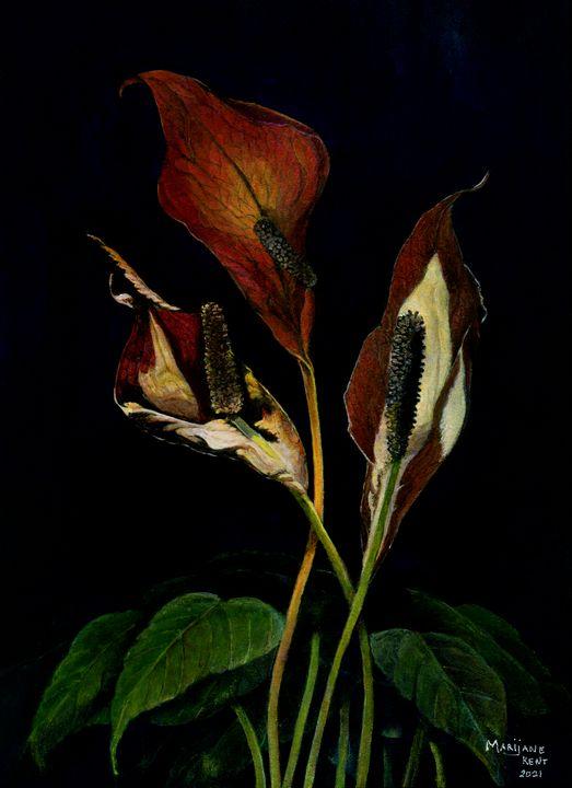 Peace Lily - Marijane Kent