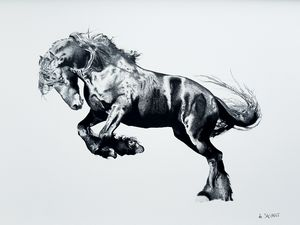 Black Stallion - Savanti Art Gallery