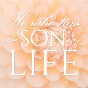 He Who Has The Son Has Life