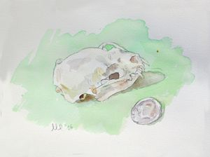 Mink Skull Watercolor