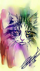 Rainbow by Trisha Shah