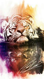 Swimming tiger by Trisha  Shah