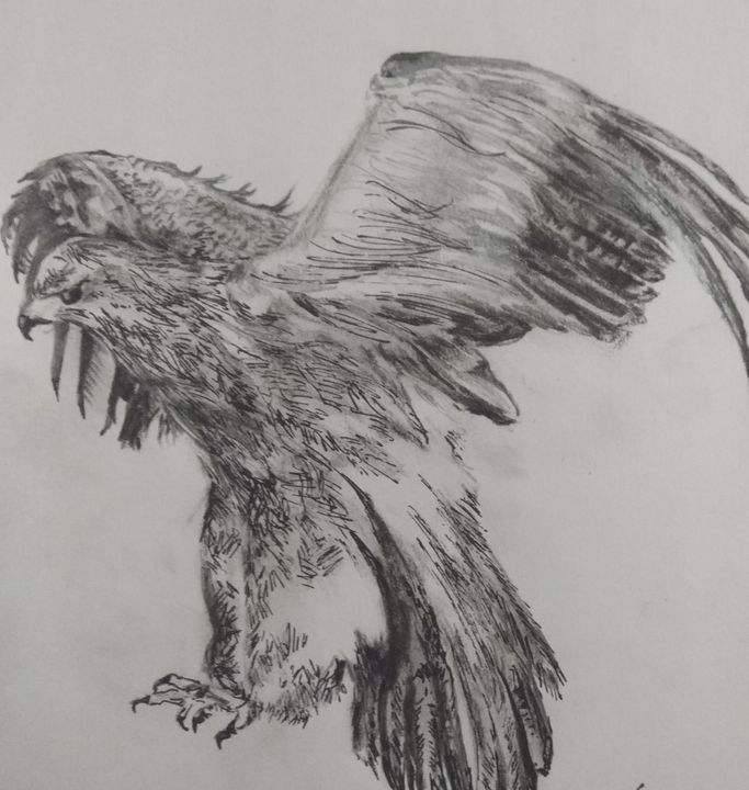 wings are lovely - Antara