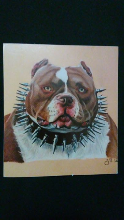 Bulldog - my portraits