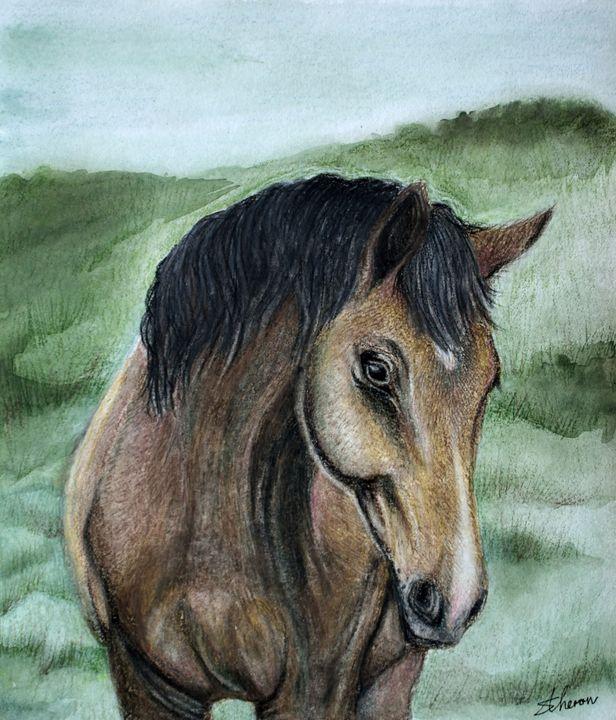 Horse - Sunet Theron