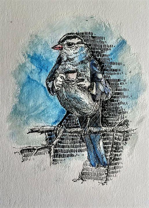 Mr. Bird - Lavendale