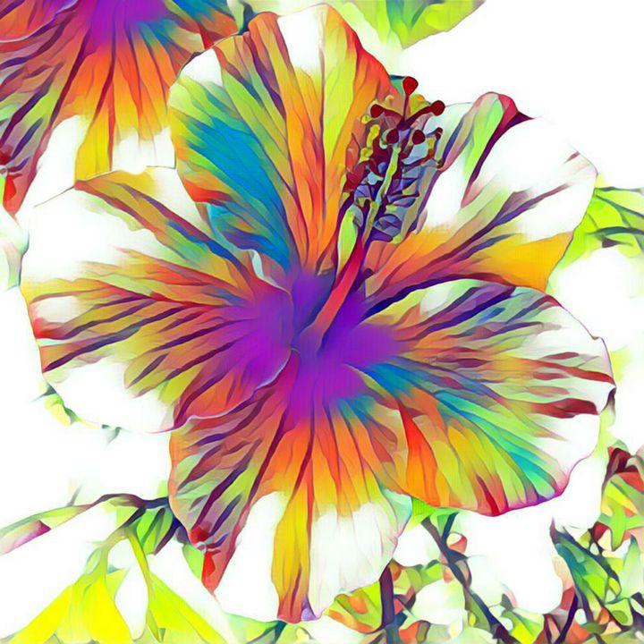 Colorful Rose Of Sharon - Minkim