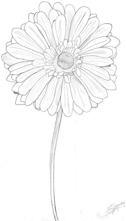 Daisy on a stem [Large] - Shamel Rajapakse