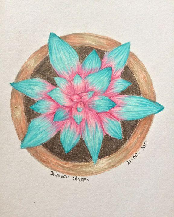 Colorful Succulent - Art By Rhi Rhi