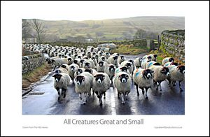 All Creatures Great and Small - Paul Berriff