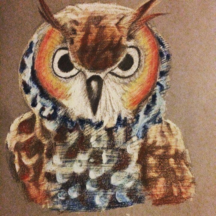 Murcia owl - K.Canales