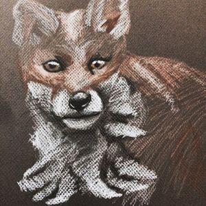 Wondering fox