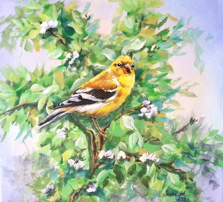 Goldfinch Female - Sandra Lett