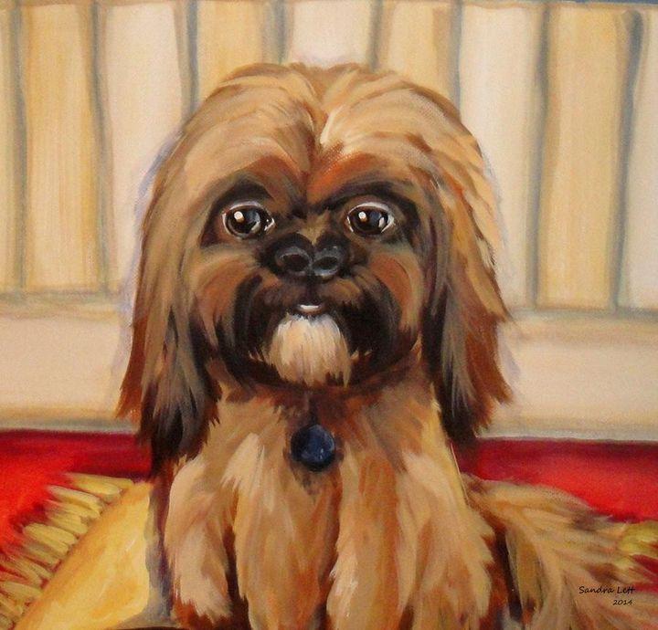 Doggone - Sandra Lett