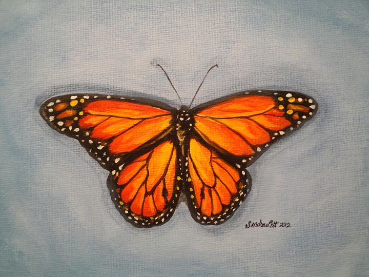 Butterfly on Blue - Sandra Lett
