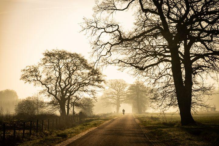 The long way home - YoshaPhotography