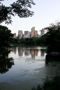 Central Park Marsh (Color)