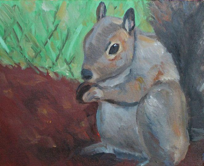 Squirrel - Blue Line Gallery