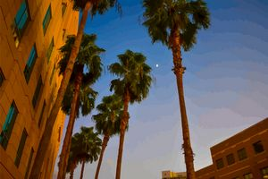 Downtown Fort Myers Moon Rise