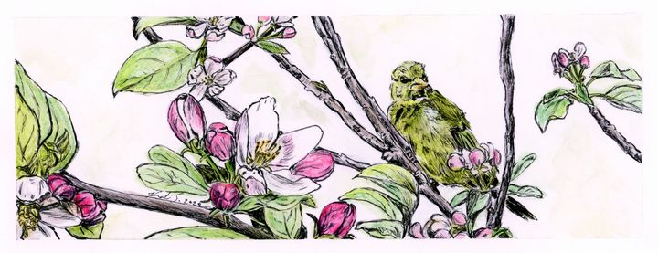 Finch in Apple Tree - Olive Artistry & Works