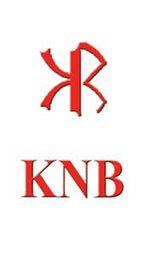 KNB ONLINE RETAIL