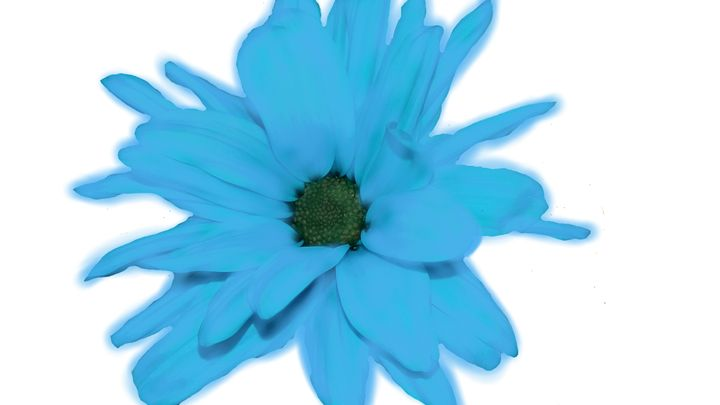 Blue Flower - M Summers