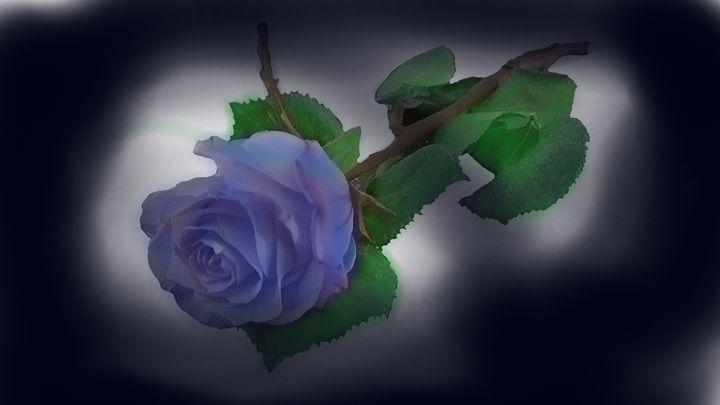 Single Rose - M Summers