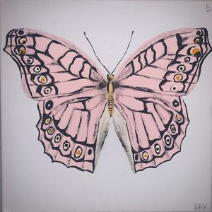 Pink and Orange Butterfly