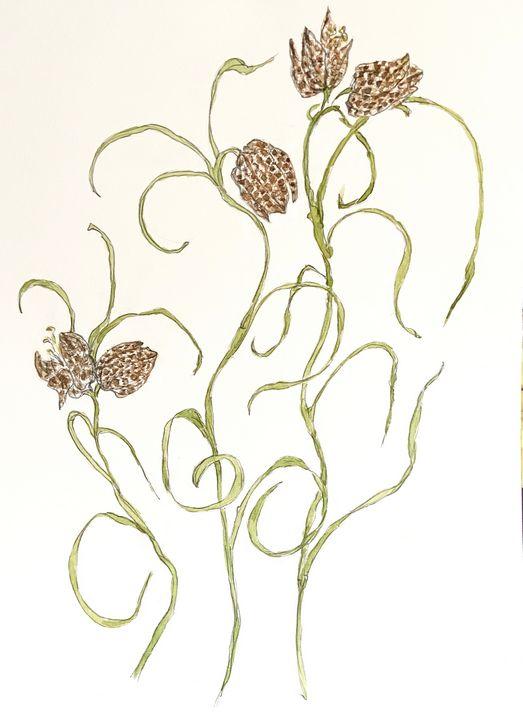 Dancing Fritillaria - Barbara E Wyeth