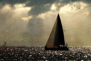 Freedom Sail