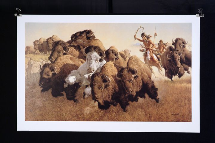In Pursuit of the White Buffalo - Village2Village