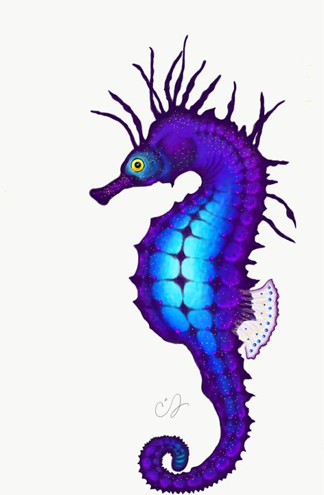 Electric Seahorse - Chrissy Snyder