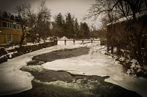 Ellicott Creek in the Winter