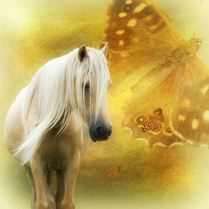 Autumn Contemplation - Horse & Butterfly