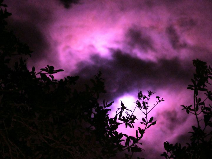 Pink cold moon - Casey's Art and Photography