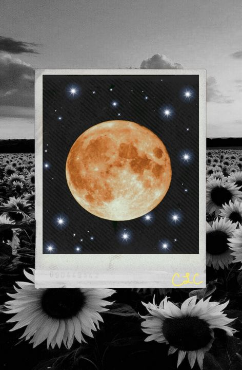 Yellow moon - Casey's Art and Photography
