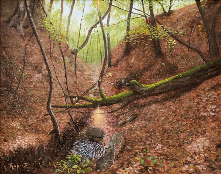 Forest Stream - dejan-trajkovic