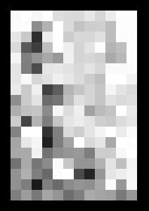 Succubus - Janick Peters, Dark-Art Extravaganza