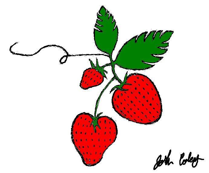 Strawberries - My Art