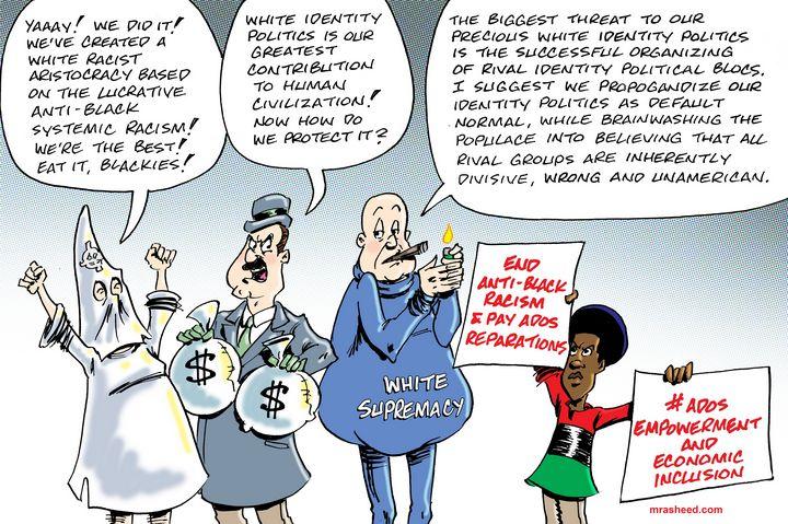 Risk Response of the White Racist - M. Rasheed Cartoons