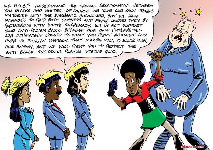 31 Exotic Flavors of Coonery - M. Rasheed Cartoons
