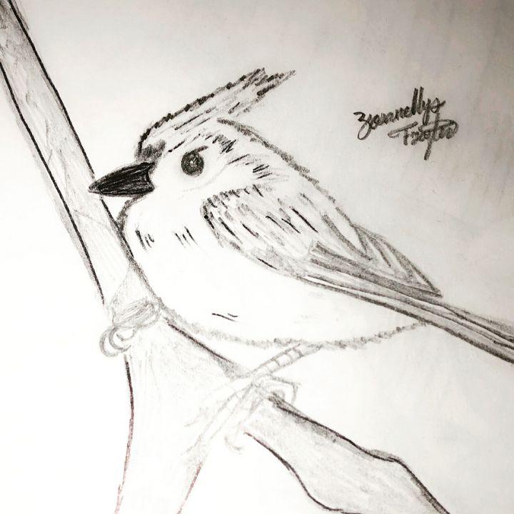 Birdy - ZF art
