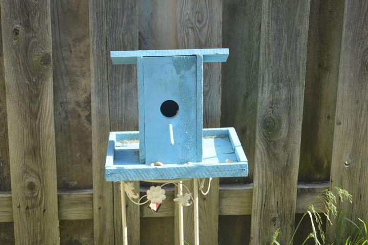 Blue Bird House - KayDreamer's Photography