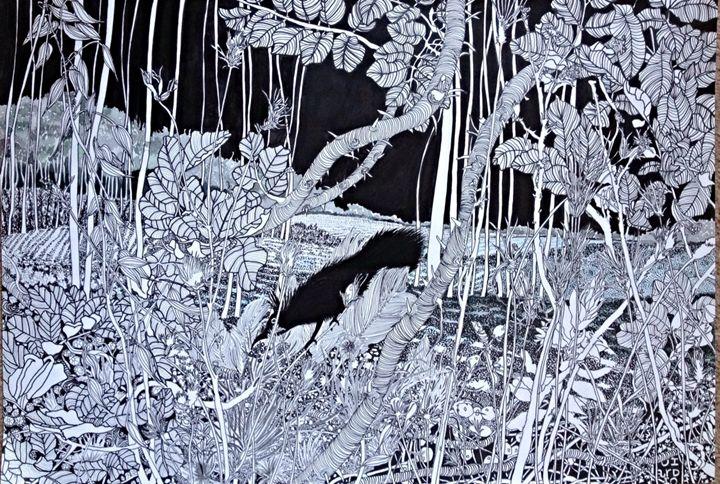 Blackbird - aRDart
