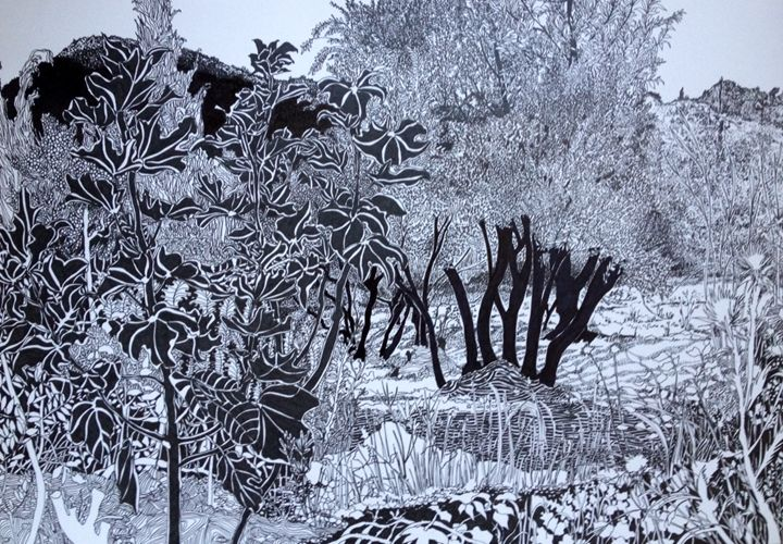 Fig Trees - aRDart
